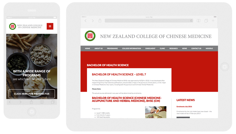 NZ College of Chinese Medicine